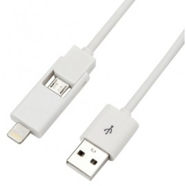 2 in 1 : Lightning + Micro USB Cable