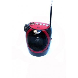 Portable FM Radio + USB, Karaoke Music MP3 Player